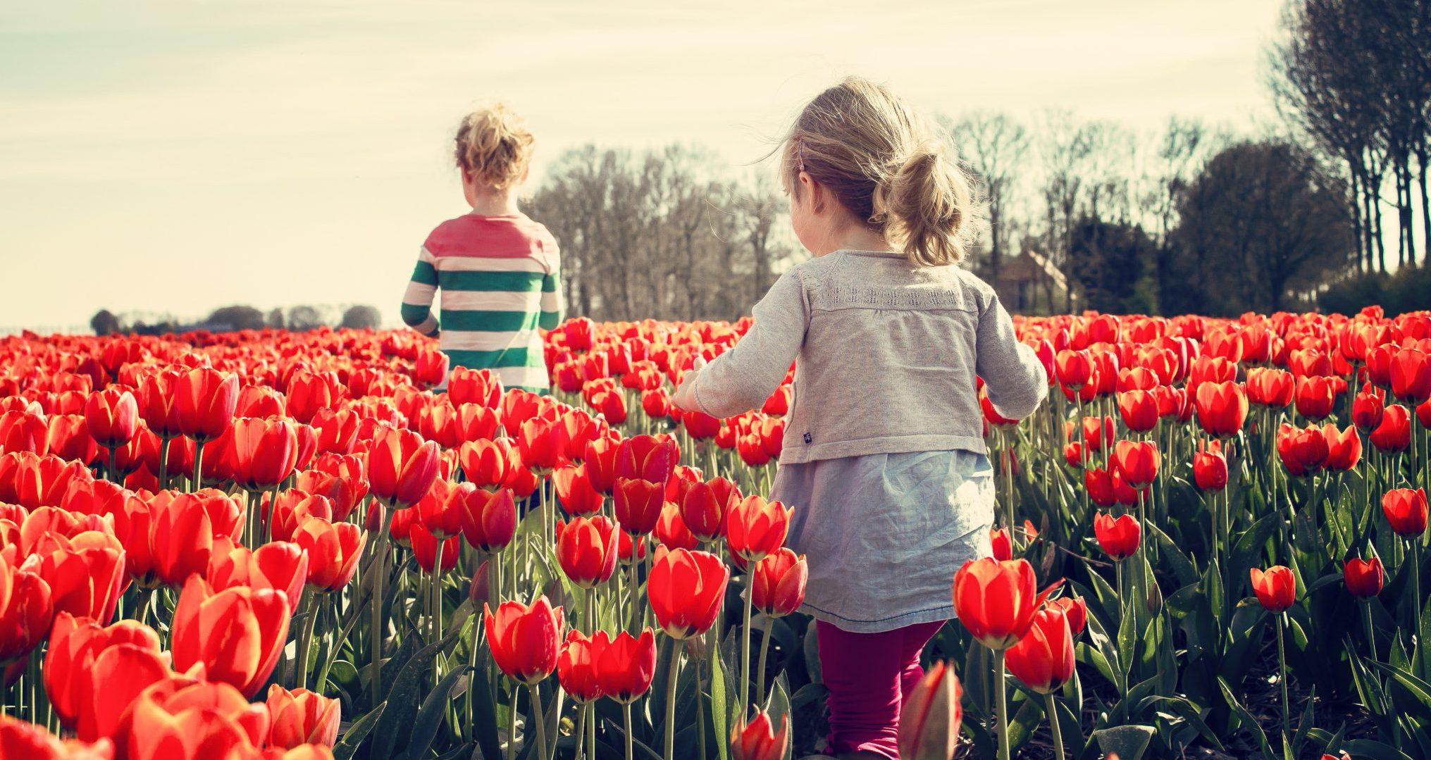 kinderen tussen tulpen
