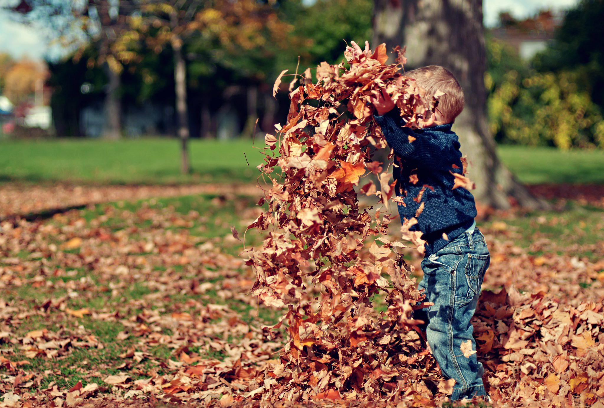 Kind met bladeren